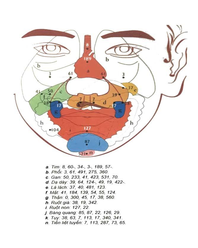 réflexologie Dien-Chan à Livry-Gargan, en Seine-Saint-Denis (93)